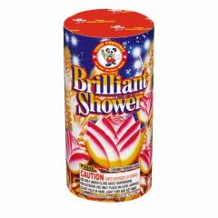 Brilliant Shower