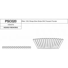 PSC020